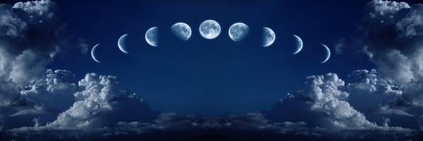 Jardiner avec la lune - Le cycle lunaire