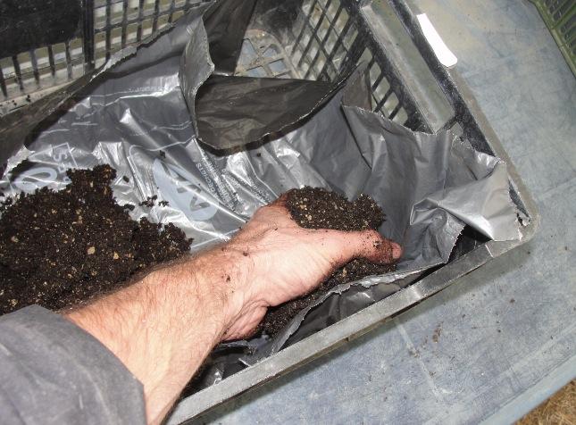 Bac à semis - Préparation des bacs 2